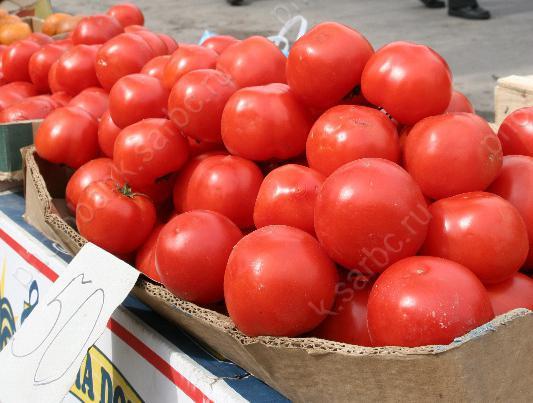 Нарынке уничтожили 1,3 тонны томатов ибаклажанов