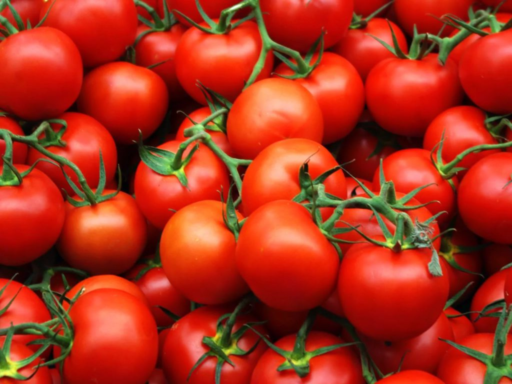 Насаратовском рынке изъяли иуничтожили неменее тонны томатов