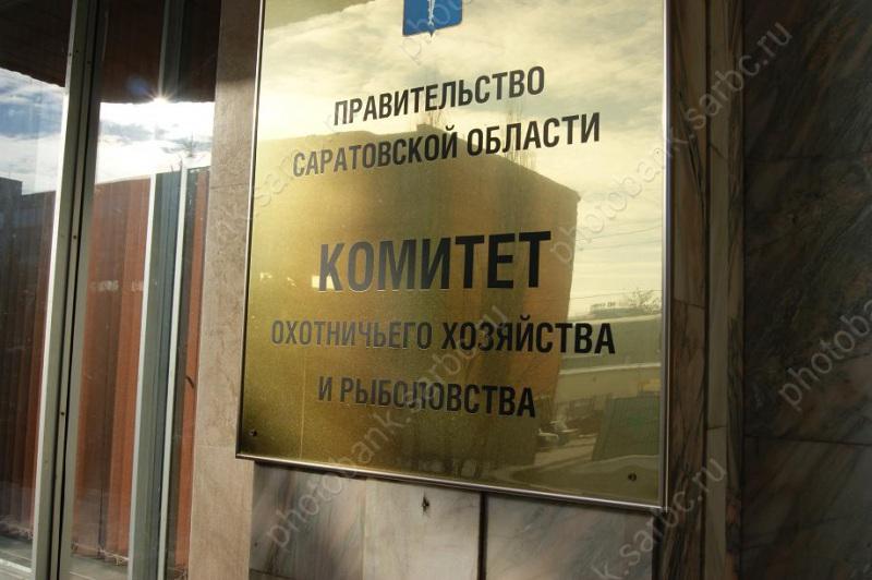 Гражданин Красноармейска убил косулю для застолья вчесть дня рождения