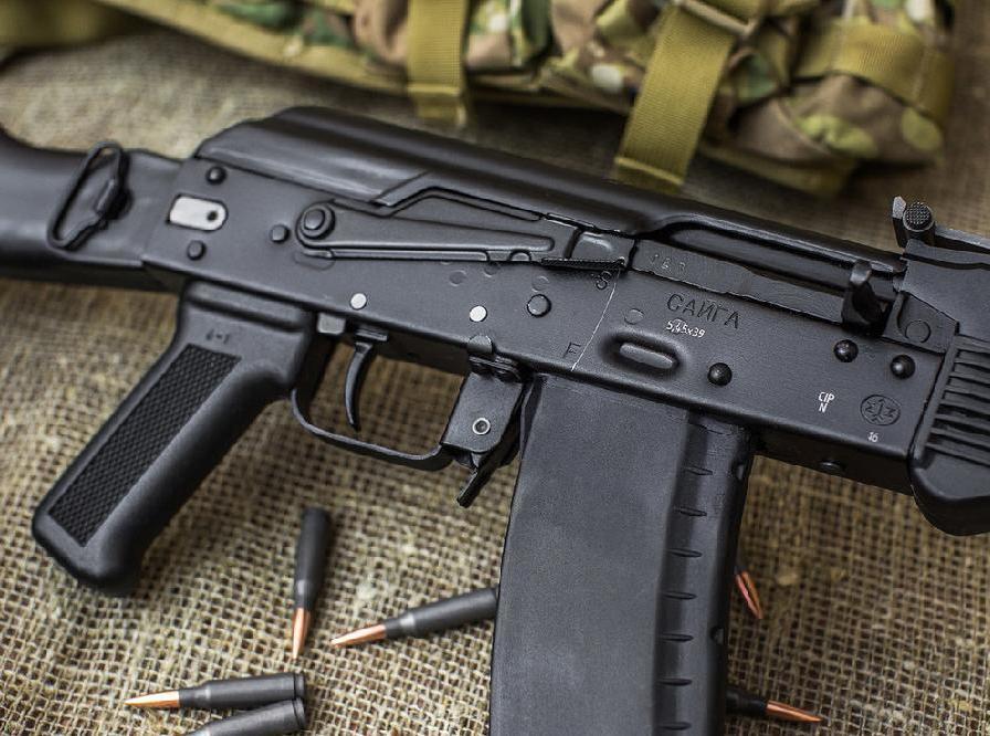 Застреливший алабая гражданин Новоузенского района получил условный срок