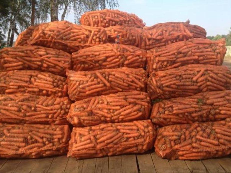 15 тонн контрабандных фруктов иягод изКР пытались ввезти в РФ