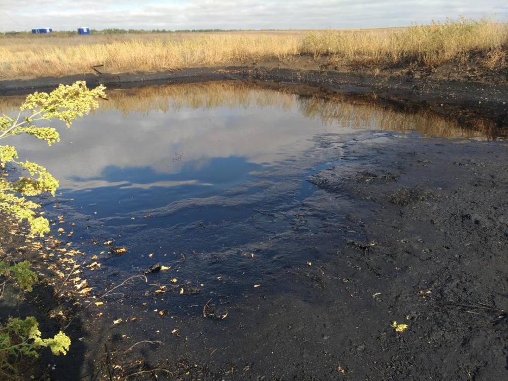 Нефтяная компания загрязнила плодородные земли под Саратовом— ущерб на млн.