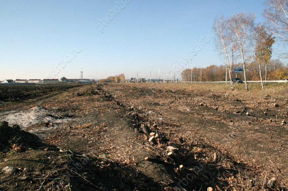 Государство забрало у«слишком бедного» саратовского депутата 46 гектаров земли