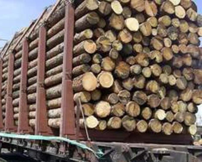 Предпринимателя обвиняют вконтрабанде 7-ми тонн стратегических ресурсов вАзербайджан
