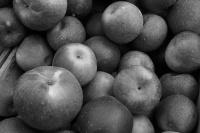 Цена на яблоки повысилась 2 с половиной раза. Соблазн, эмбарго, неурожай