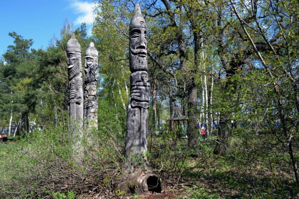 У горожан спрашивают мнение по поводу развития Кумысной поляны